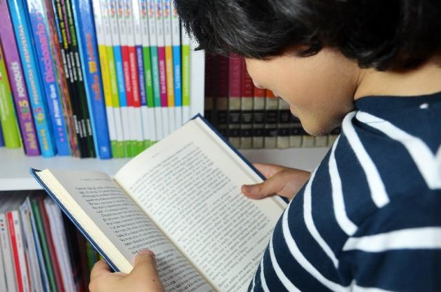 英語の本を読む子供