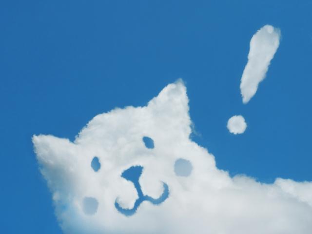 雲でできた犬